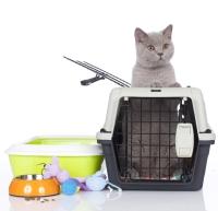 Pet Evacuation Planning
