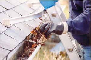 Spring Home Inspection Gutter Cleaning