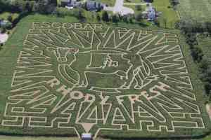 Agritourism Insurance, Corn Maze