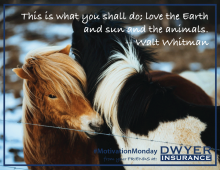 "Motivation Monday, Earth Day Inspired: ""This is what you shall do; love the Earth and sun and the animals."" -- Walt Whitman"