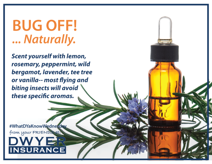Scent yourself with lemon, rosemary, peppermint, wild bergamot, lavender, tea tree or vanilla-- most flying and biting insects including mosquitoes will avoid these specific aromas.
