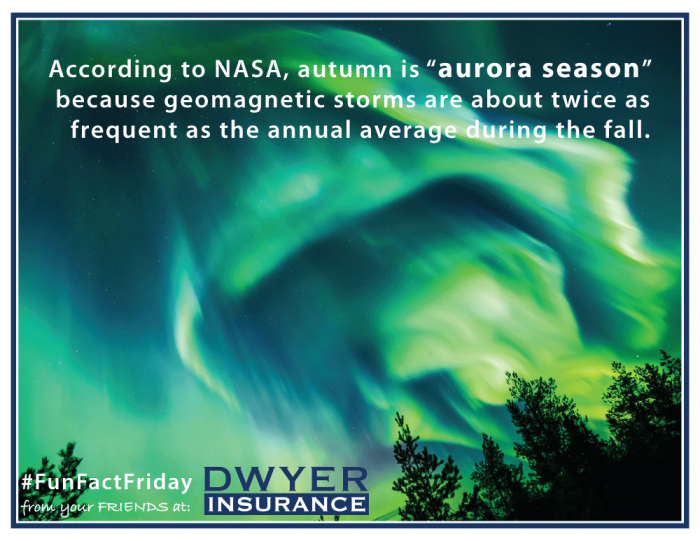 """According to NASA, autumn is """"aurora season"""" because geomagnetic storms are about twice as frequent as the annual average during the fall."""