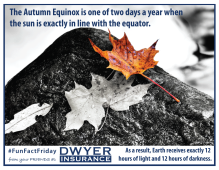 The Autumn Equinox (tomorrow) is one of two days a year when the sun is exactly in line with the equator. As a result, Earth receives exactly 12 hours of light and 12 hours of darkness.