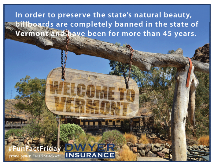 In order to preserve the state's natural beauty, billboards are completely banned in the state of Vermont and have been for more than 45 years.