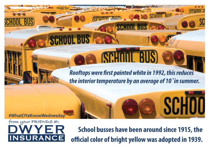 School busses have been around since 1915, the official color of bright yellow was adopted in 1939. Rooftops were first painted white in 1992, this reduces the interior temperate by an average of 10 degrees in summer.