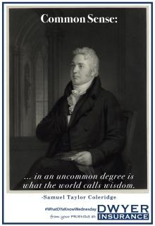 """Common sense in an uncommon degree is what the world calls wisdom."" ― Samuel Taylor Coleridge"