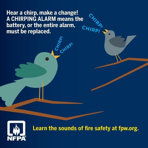 Hear A Chirp, Make A Change!